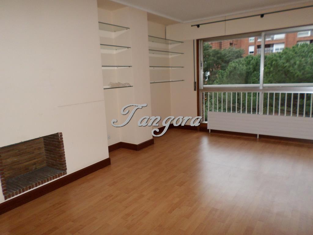 Fantástico piso en la urbanización Villa de Plencia..
