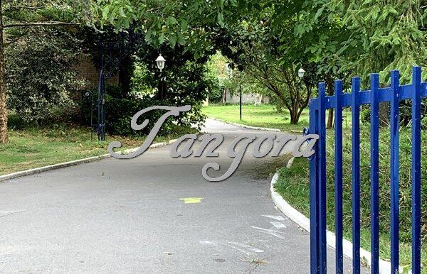 Jardín B (Copy)