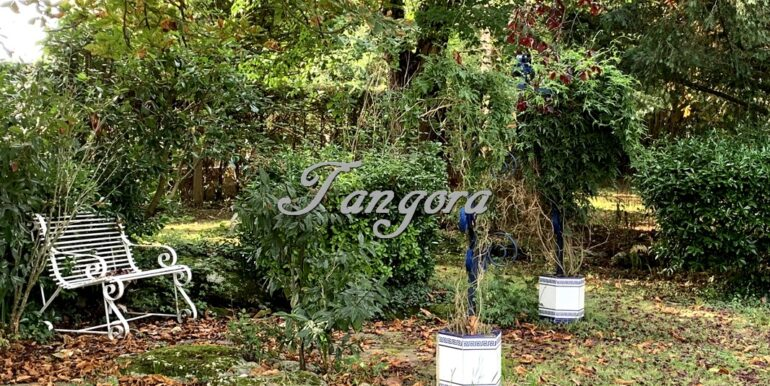 Jardín D (Copy)