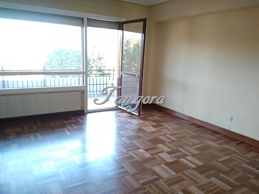 Precioso  piso, amplio y muy luminoso, con terraza, en fantástica urbanización de Algorta.