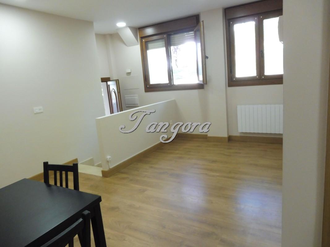 Precioso piso de dos dormitorios, de reciente construcción, en Algorta.